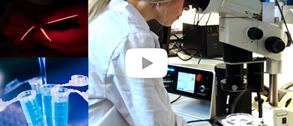 Sneak peeks of in-vitro laser solutions video